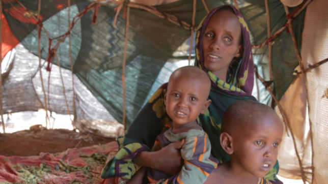 20 million Africans on brink of famine: UN agencies