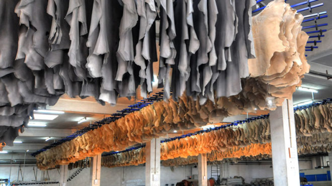 Indian-leather-industry