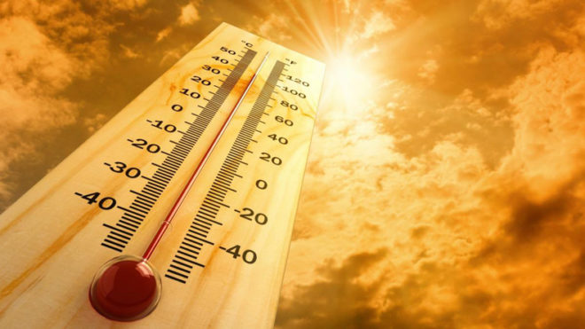 Rajasthan roasts under heat wave conditions