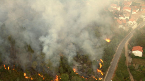 43 killed in Portugal forest fire