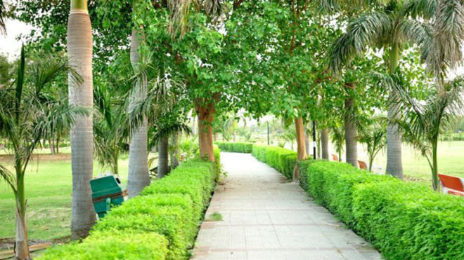 How safe the Delhi parks are when night takes over?