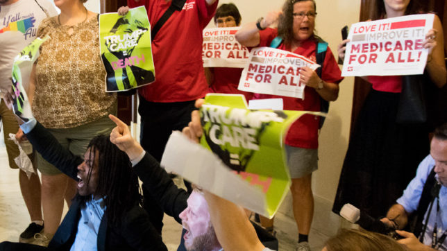 At least 80 arrested in US for protesting healthcare reform