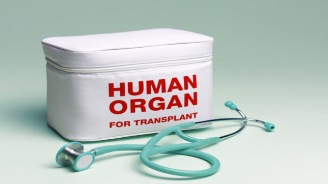 Now an algorithm-based system to facilitate organ transplants