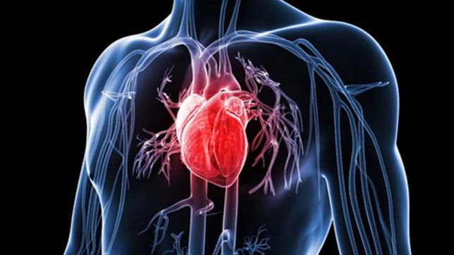 Insufficient levels of phosphate in blood may up heart attack risk