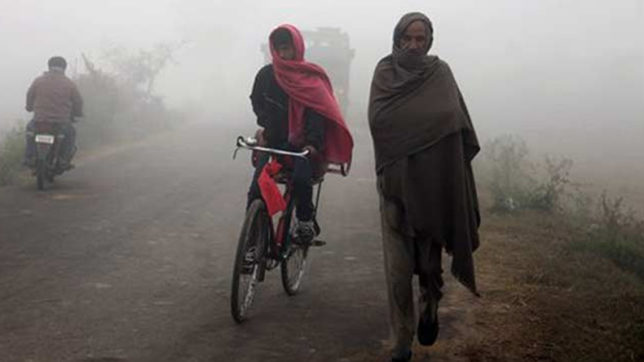 Cold wave, fog affect life in Punjab, Haryana; 1 dead
