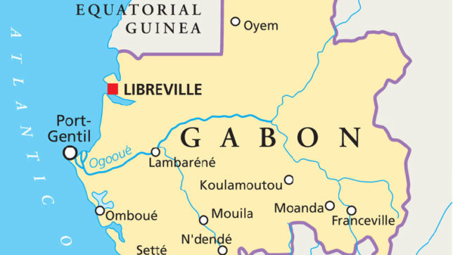 African country Gabon seeks to attract Indian investors NewsX