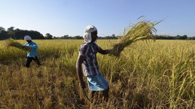 Finance minister announces major push in credit for farmers