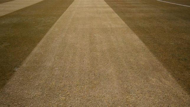 cricket-pitches