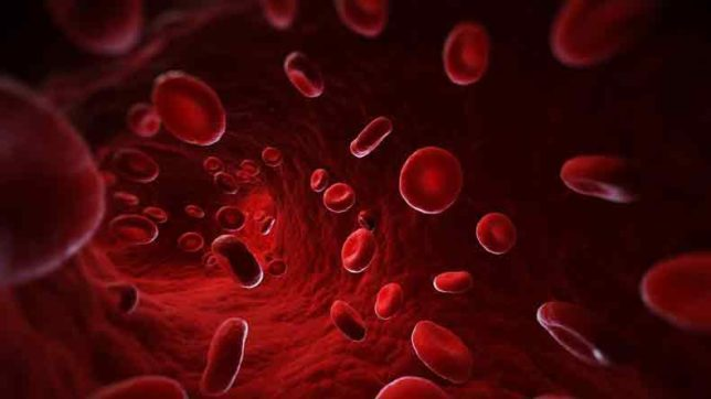Blood-Group-Cells