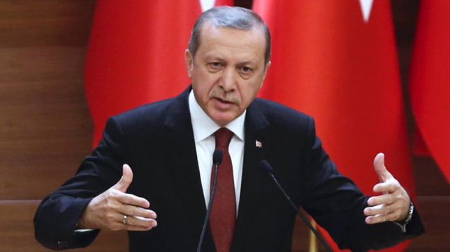 Joint trade between India and Turkey should be balanced, says Erdogan