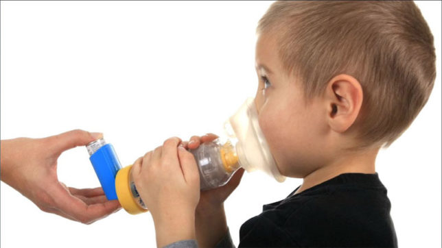 Pollens one of the reasons behind asthma attacks: Study