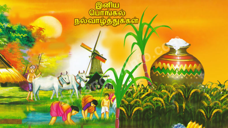 Pongal messages and wishes in tamil for 2018 whatsapp messages so here we bring you the whatsapp messages pongal wishes and greetings sms facebook posts to wish everyone m4hsunfo