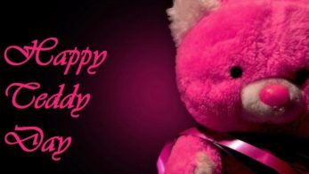 Couples and youth celebrate this day of Valentine's week by gifting their loved ones a lovely and attractive teddy