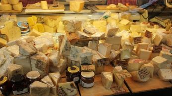 The Big Cheese Festival, Big Cheese Festival, cheese festival, Hove Lawns, East Sussex, England, Lifestyle and Fashion News