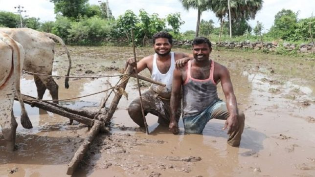 Kiki challenge: Watch these farmers take on the viral jig, it'll blow your mind