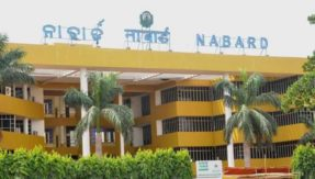 NABARD Development Assistant recruitment: Prelims admit card released at nabard.org